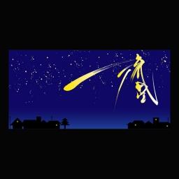 <h5>流星 りゅうせい 2009</h5><p>額(大)800mm×400mm  ¥86,400(税込) 額(小)600mm×300mm  ¥64,800(税込)<br> <br> こんな流星をいつか見てみたい<br> <br> </p>