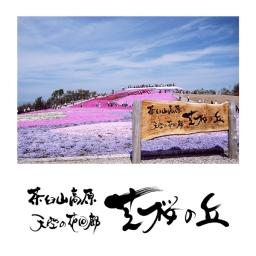 <h5>茶臼山高原 天空の花回廊 芝桜の丘</h5><p>2008<br>豊根村観光協会</p>
